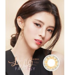LIGHLY FANTASY BROWN [40P]